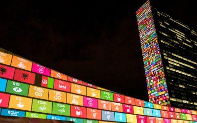 Online cursus over SDG's van RSM