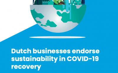 Nederlands bedrijfsleven pleit voor herstel gebaseerd op duurzaamheid